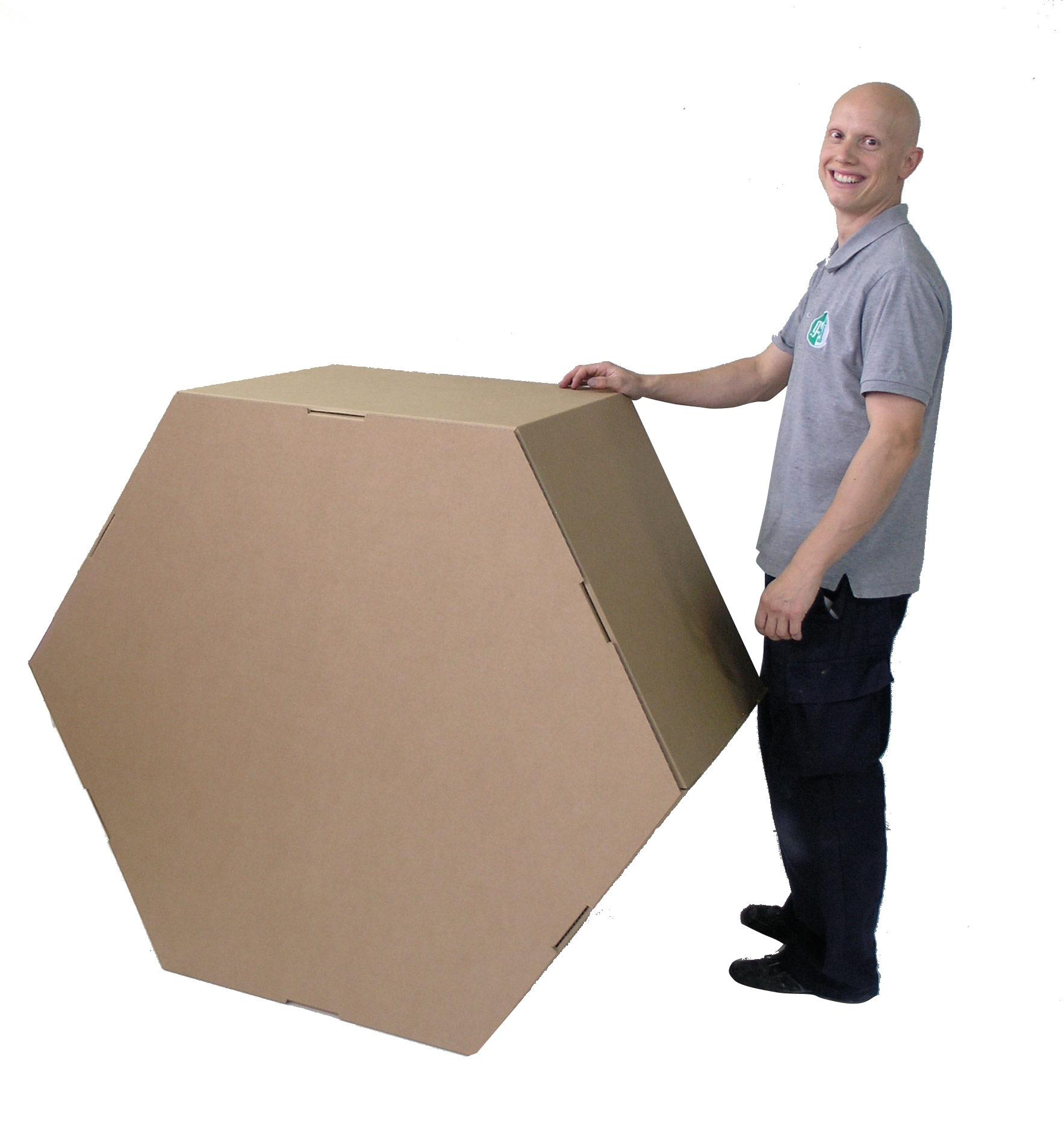 polígonos de cartón